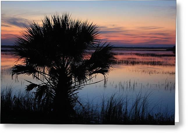 Hunting Isalnd Tidal Marsh Greeting Card by Michael Weeks
