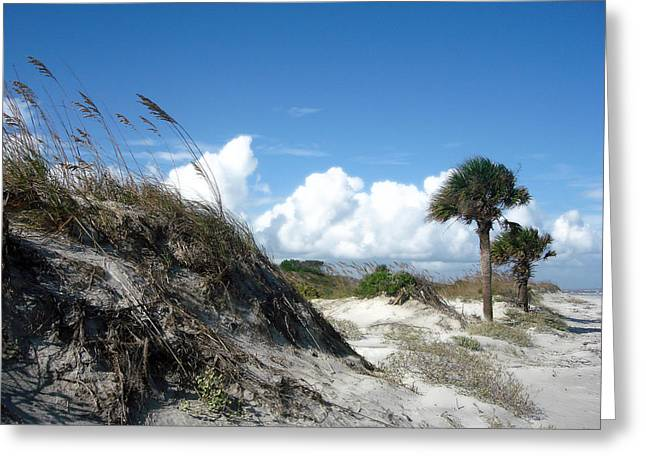 Hunting Island - 9 Greeting Card by Ellen Tully
