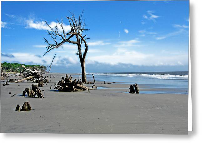 Greeting Card featuring the photograph Hunting Island - 1 by Ellen Tully