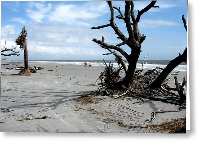 Greeting Card featuring the photograph Hunting Island - 5 by Ellen Tully