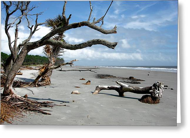 Greeting Card featuring the photograph Hunting Island - 7 by Ellen Tully