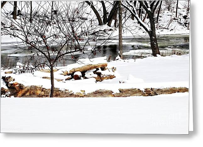 Huron River Greeting Card by Gena Weiser