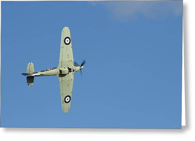 Hurricane In Action Greeting Card by Donald Turner