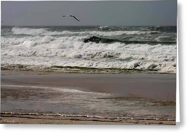 Hurricane Isaac Greeting Card