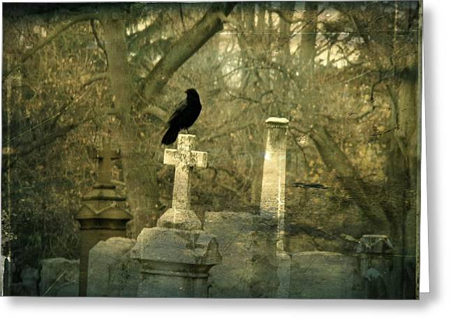 Hush Greeting Card by Gothicrow Images