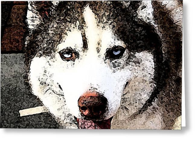 Husky Greeting Card by Everett Spruill