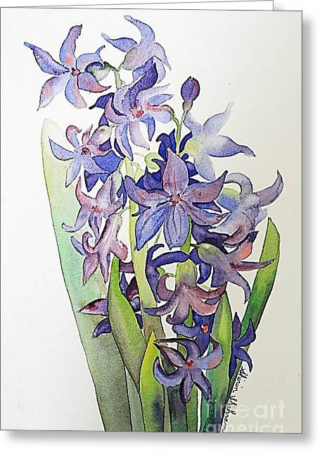 Hyacinthus Greeting Card
