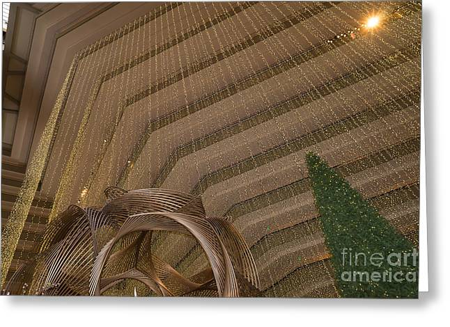 Hyatt Regency Hotel Embarcadero San Francisco California Dsc1974 Greeting Card