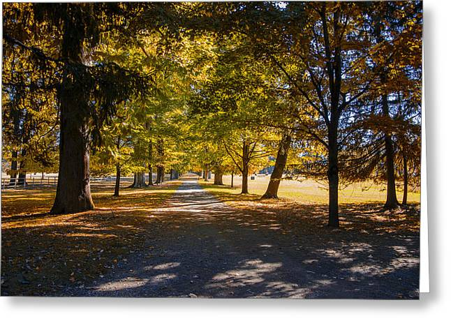 Hyde Park - Franklins Challenge Greeting Card by Bill Cannon