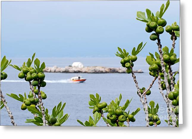 Hydra Island During Springtime Greeting Card by George Atsametakis