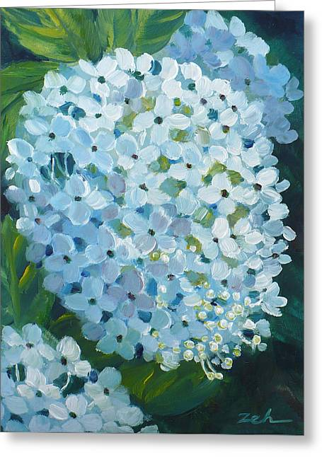 Hydrangea Blossom Greeting Card