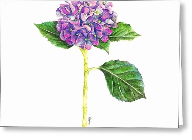 Hydrangea Greeting Card by Dion Dior