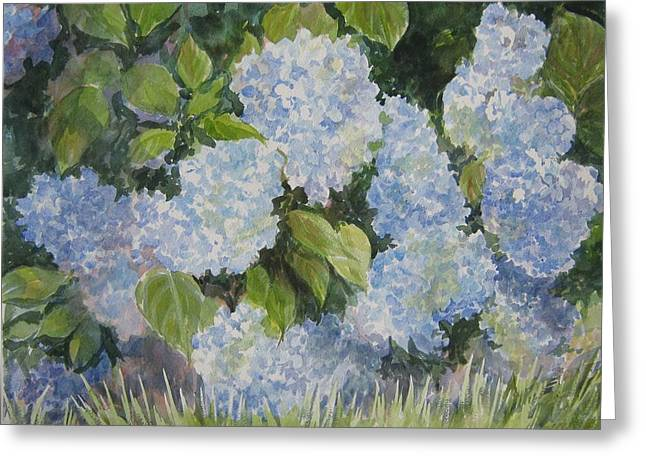 Hydrangea IIi Sold Greeting Card