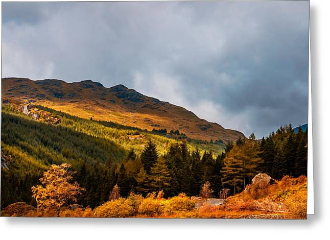 I Cant Forget This Light. Scotland Greeting Card by Jenny Rainbow