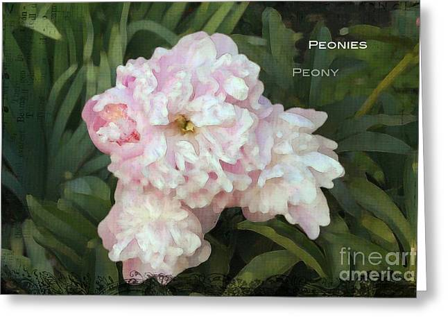 I Cry For You My Peonies Greeting Card