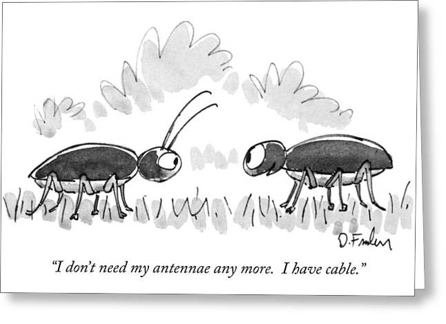 I Don't Need My Antennae Any More.  I Have Cable Greeting Card by Dana Fradon