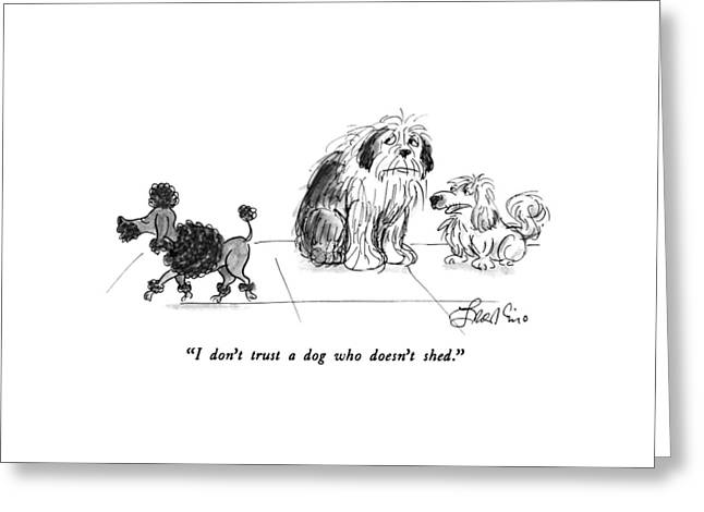 I Don't Trust A Dog Who Doesn't Shed Greeting Card by Edward Frascino