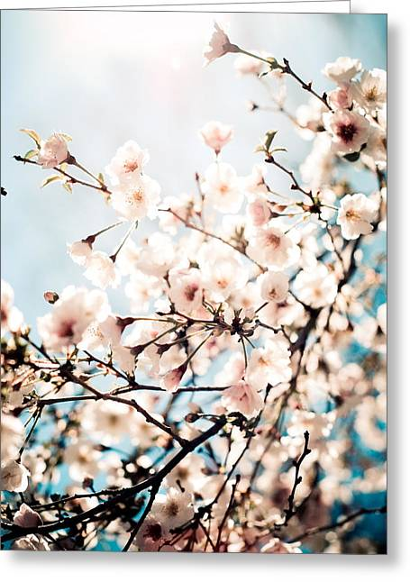 I Dreamt Of Spring Greeting Card by Olivia StClaire
