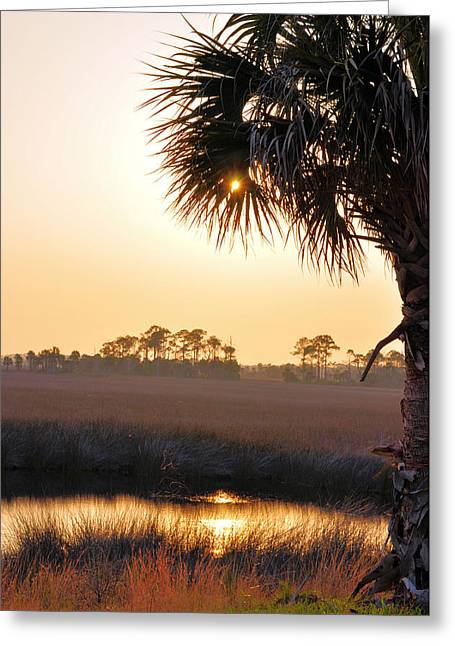 I Have Not Been Found  Greeting Card by Jan Amiss Photography