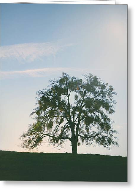 I Live And Breathe For You Greeting Card by Laurie Search
