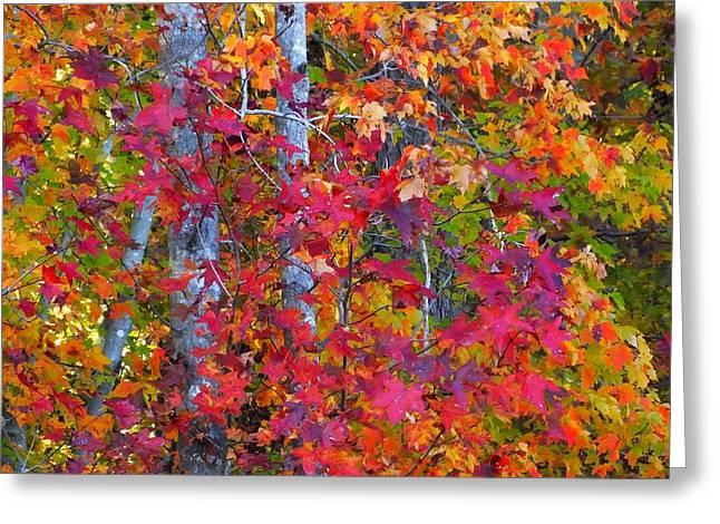 I Love Fall Greeting Card by Scott Cameron