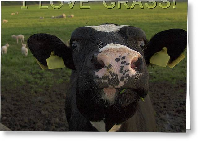 I Love Grass --said The Cow. Greeting Card