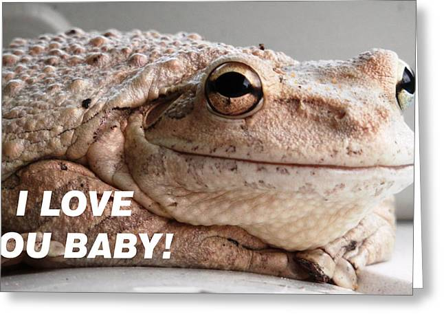 Frog Declaration Of Love Greeting Card