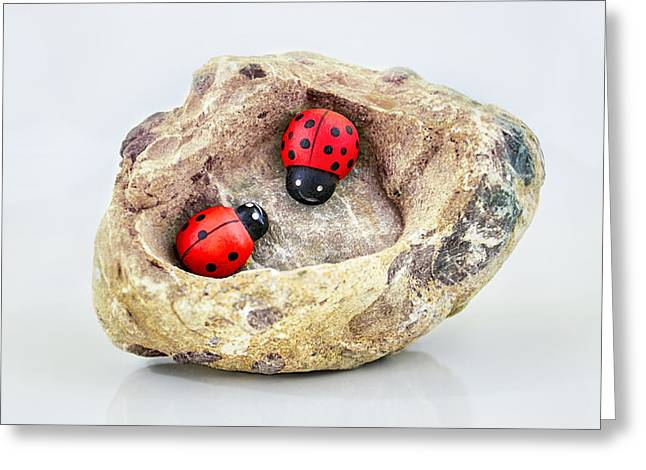I Love You - Says Ladybugs Greeting Card by Gynt