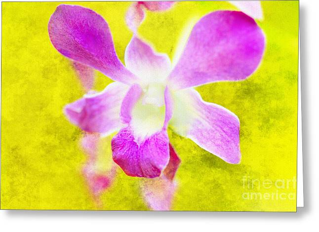 I Remember You Greeting Card by Floyd Menezes