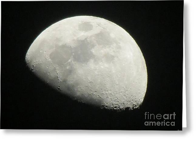 I See The Moon And The Moon Sees Me Greeting Card by Janice Westerberg