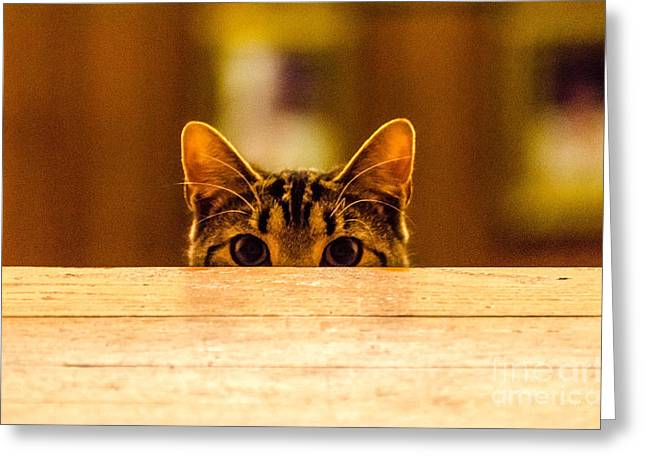 I See You Greeting Card by Mike Ste Marie