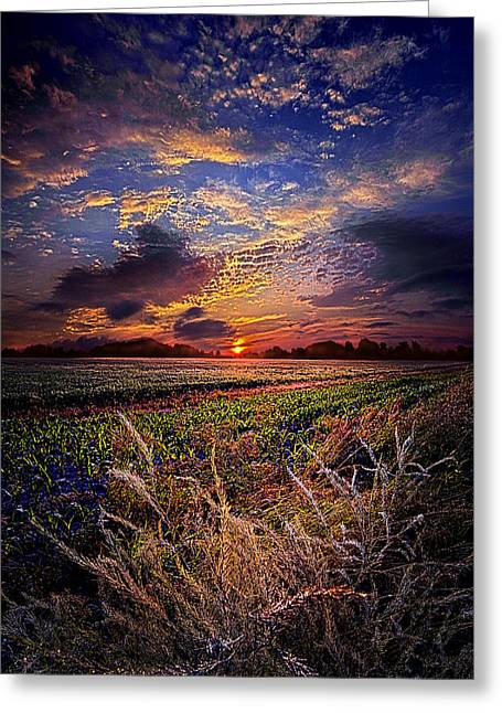 I Want To Dance To The Static On An Am Radio Greeting Card by Phil Koch