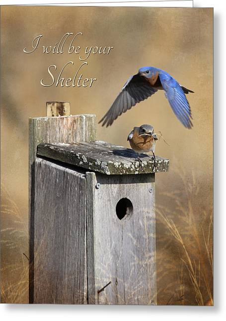 I Will Be Your Shelter Greeting Card by Lori Deiter