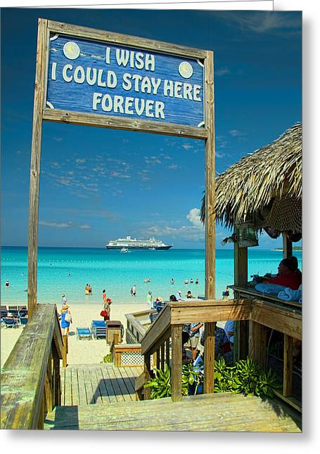 I Wish I Could Stay Here Forever Greeting Card by David Smith