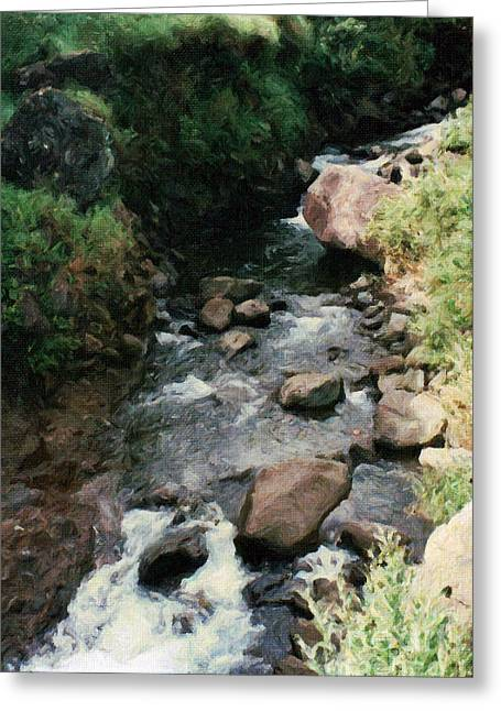 Rocky Stream In Iao Valley Greeting Card