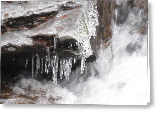 Ice Cold Creek In Colorado Greeting Card