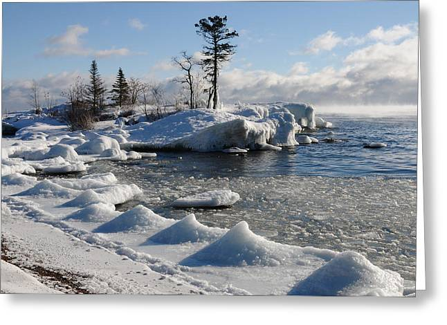 Greeting Card featuring the photograph Ice Cold by Sandra Updyke