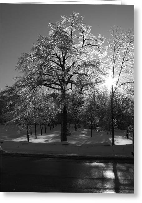 Ice Cold Sun Greeting Card by Maude Demers