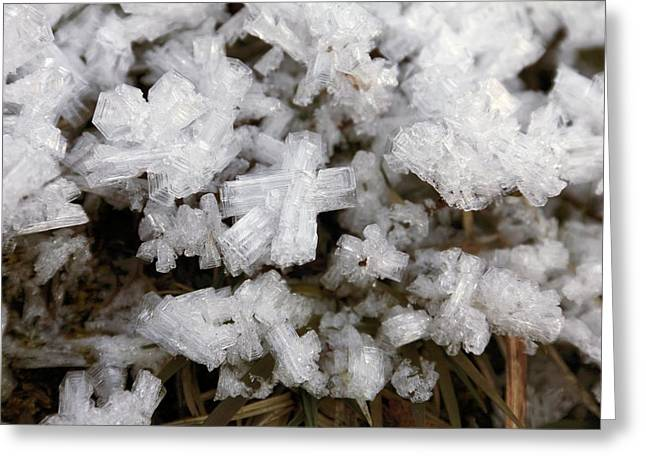 Ice Crystals Greeting Card by Martin Rietze