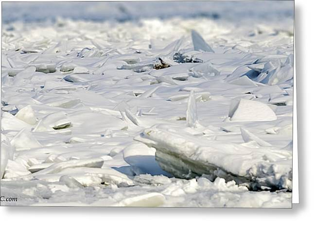 Ice Flow At Algonac Greeting Card