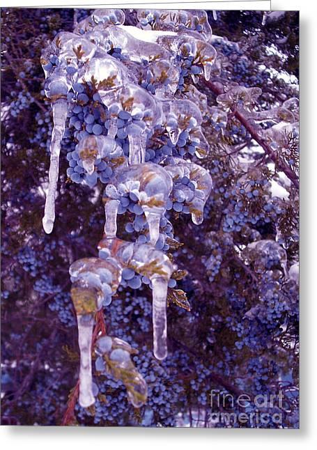 Ice In Purple Greeting Card by R McLellan