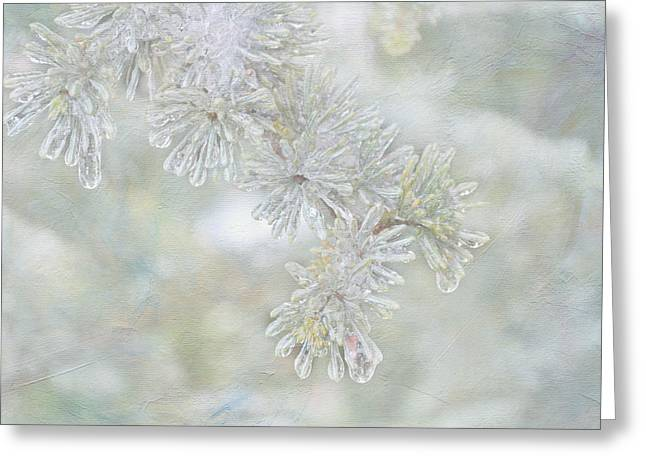 Ice Needles Greeting Card