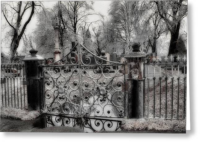Ice On The Gate Greeting Card