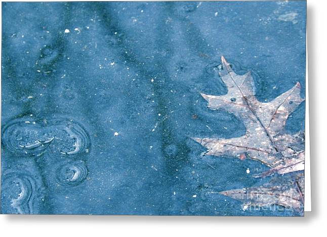Ice Reflections 2 Greeting Card by Laura Yamada