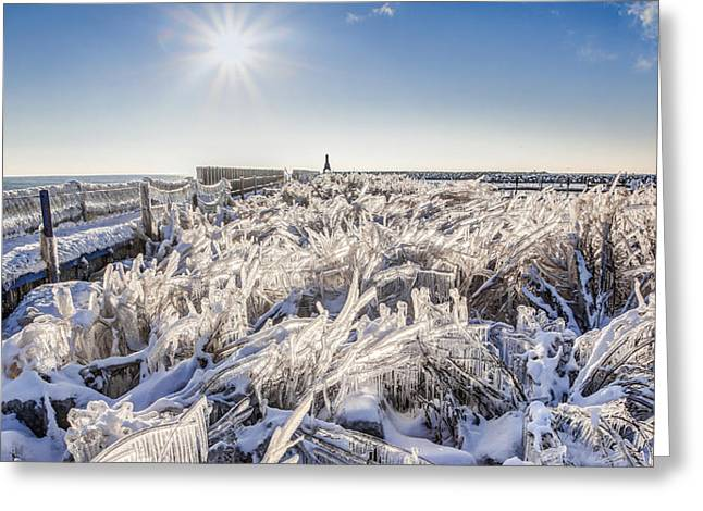 Ice Sculptures Greeting Card by Anna-Lee Cappaert