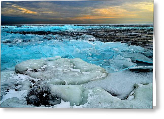 Frozen Beauty In Extreme Greeting Card