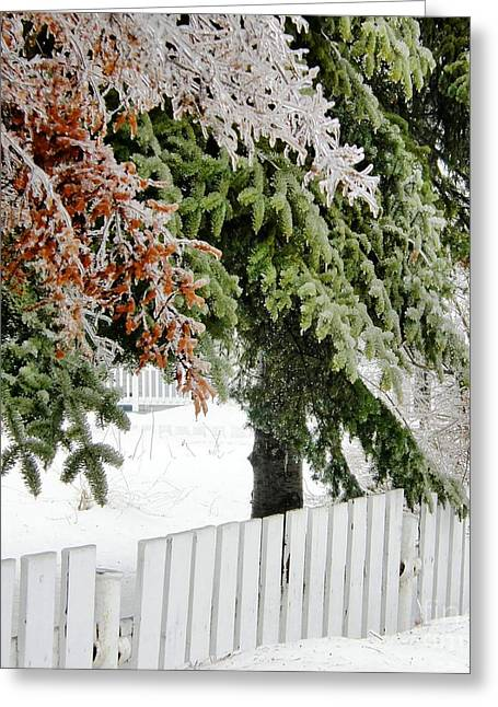 Ice Storm 3 Greeting Card by Sophie Vigneault