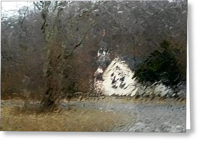 Greeting Card featuring the photograph Ice Storm by Steven Huszar