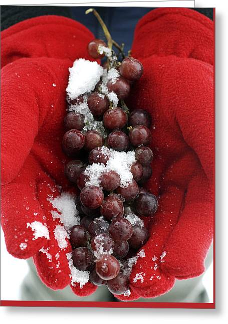 Ice Wine Grapes And Red Gloves Greeting Card