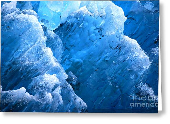 Greeting Card featuring the photograph Iceberg Blues by Cynthia Lagoudakis